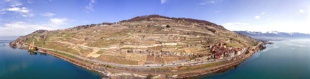 拉沃葡萄园梯田是在沃州小行政区的一个区域在瑞士 免版税库存图片