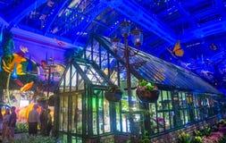 贝拉焦旅馆音乐学院&植物园 免版税库存照片