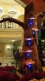 贝拉焦音乐学院在拉斯维加斯 免版税图库摄影
