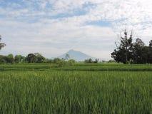 默拉皮火山印度尼西亚2016年3月9日 免版税图库摄影