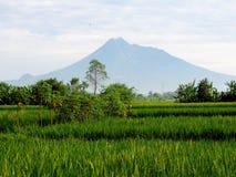 默拉皮火山印度尼西亚2016年3月9日 图库摄影