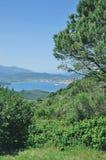 费拉约港,厄尔巴岛海岛,托斯卡纳,意大利 免版税库存照片