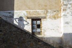 拉美的阴影 免版税库存照片