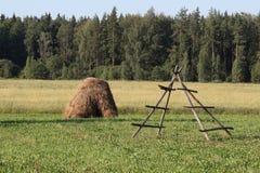 拉脱维亚乡下 免版税库存图片