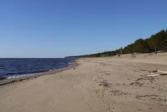 拉脱维亚海滩 库存照片