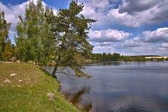 拉脱维亚道加瓦河 库存图片