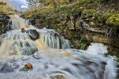 拉脱维亚风景 免版税库存照片