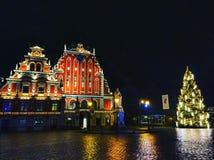 拉脱维亚 免版税图库摄影