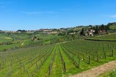 拉达伊恩基亚恩蒂和葡萄园和橄榄树在Chianti地区,托斯卡纳,意大利全景美丽的景色  免版税库存照片