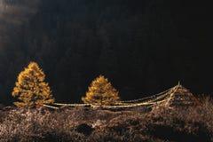 拉达克山景 免版税库存图片