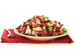 从拉迪基奥、莴荬菜和调味料的食家沙拉 库存图片
