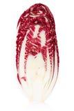 拉迪基奥部分,红色沙拉 库存图片