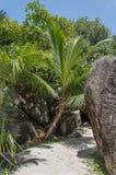 拉迪格岛塞舌尔群岛 库存照片