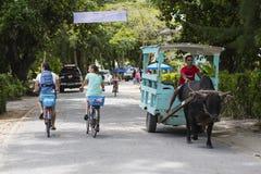 拉迪格岛街场面,塞舌尔群岛,社论 免版税库存照片