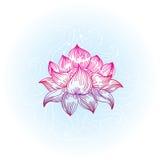 拉长的现有量莲花样式 免版税库存照片
