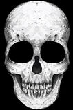 拉长的现有量头骨 图库摄影