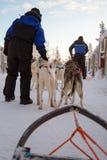 拉雪撬的狗爱斯基摩 免版税库存照片