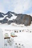 拉雪橇狗阵营水和制冷剂瓶 库存图片