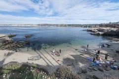 拉霍亚小海湾在加利福尼亚 免版税库存图片