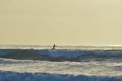 拉霍亚海滩冲浪 免版税图库摄影