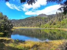 拉维多利亚盐水湖 免版税库存照片
