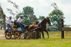 拉货车的马种族 免版税库存图片