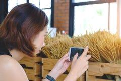 拍与手机的妇女照片,年轻泰国女孩拍照片 免版税图库摄影
