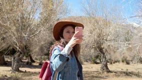 拍与手机的妇女远足者照片在山峰 影视素材