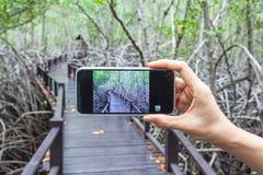 拍在一个手机的女孩的手照片在木桥 免版税库存照片
