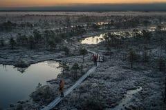 拍在木道路,在沼泽的路的人们照片在早期的冬天早晨 免版税库存图片