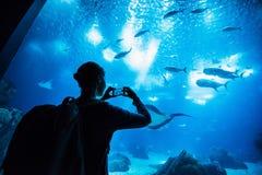 拍在水族馆的旅客妇女照片在智能手机、旅行和活跃生活方式概念 免版税库存图片