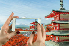 拍摄与一台聪明的电话照相机的妇女照片在Mt 有秋天颜色的富士山在日本 免版税库存图片