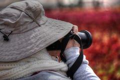 拍摄野花的女性摄影师在来自南方的风暴加利福尼亚Superbloom期间 免版税库存照片