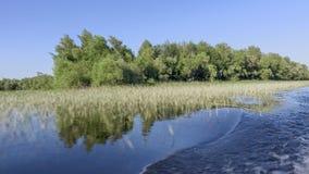 拍摄从小船的边 伏尔加河,俄罗斯 沿岸的有绿色植被的运动或海岛 免版税库存照片