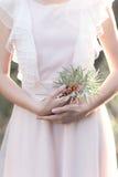 轻拍有海鼠李分支的女孩在一套柔和的空气婚礼礼服的手上在阳光下发出光线在新娘的优美的手 免版税库存图片