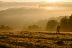 拍照片的风景摄影师早晨 免版税库存照片