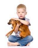 轻拍狗头的小男孩 背景查出的白色 库存照片