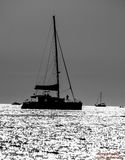 拒绝细致的金亲切的海运海浪 免版税图库摄影