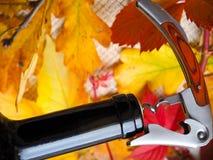 拔塞螺旋打开一个瓶在欢乐明亮的背景的酒 免版税库存照片