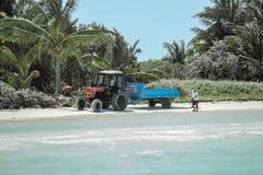 拖拉机和拖车从海滩取消海草 库存照片