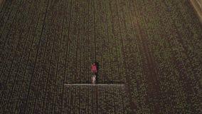 拖拉机喷洒肥料领域 库存图片