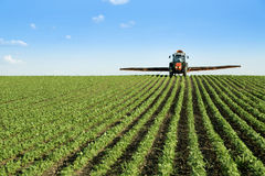 拖拉机喷洒的大豆庄稼领域 库存图片