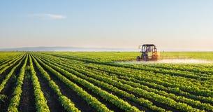 拖拉机喷洒的大豆领域 免版税库存照片