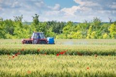 拖拉机喷洒的麦子 库存照片