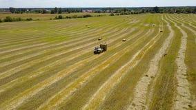 拖拉机收集在领域的干草 股票视频