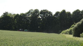 拖拉机浪花在森林附近施肥麦子庄稼领域 股票录像