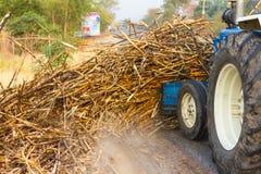 拖拉机等级小块藤茎路边 免版税库存图片