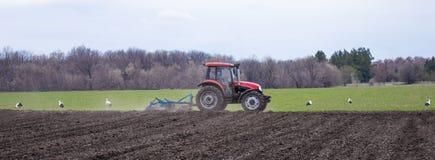 拖拉机耕种土地和植物种子在春天领域 免版税图库摄影
