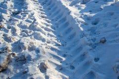 拖拉机轨道在雪的 免版税库存照片