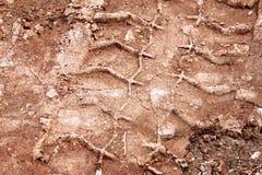 拖拉机,挖掘机,汽车,在泥泞的足迹的汽车轮胎轨道 泥和轮子在路追踪在雨以后 库存图片